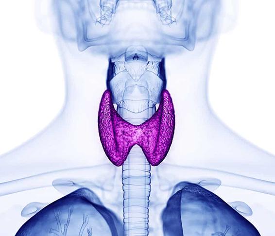 Alteraciones tiroideas como causa de abortos