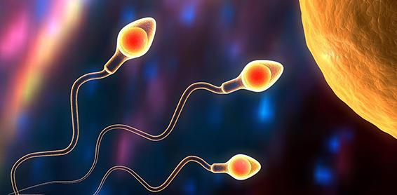 Estudio de espermograma